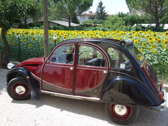 Chianti Classic Car